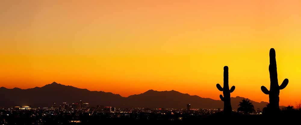 Phoenix during sunset