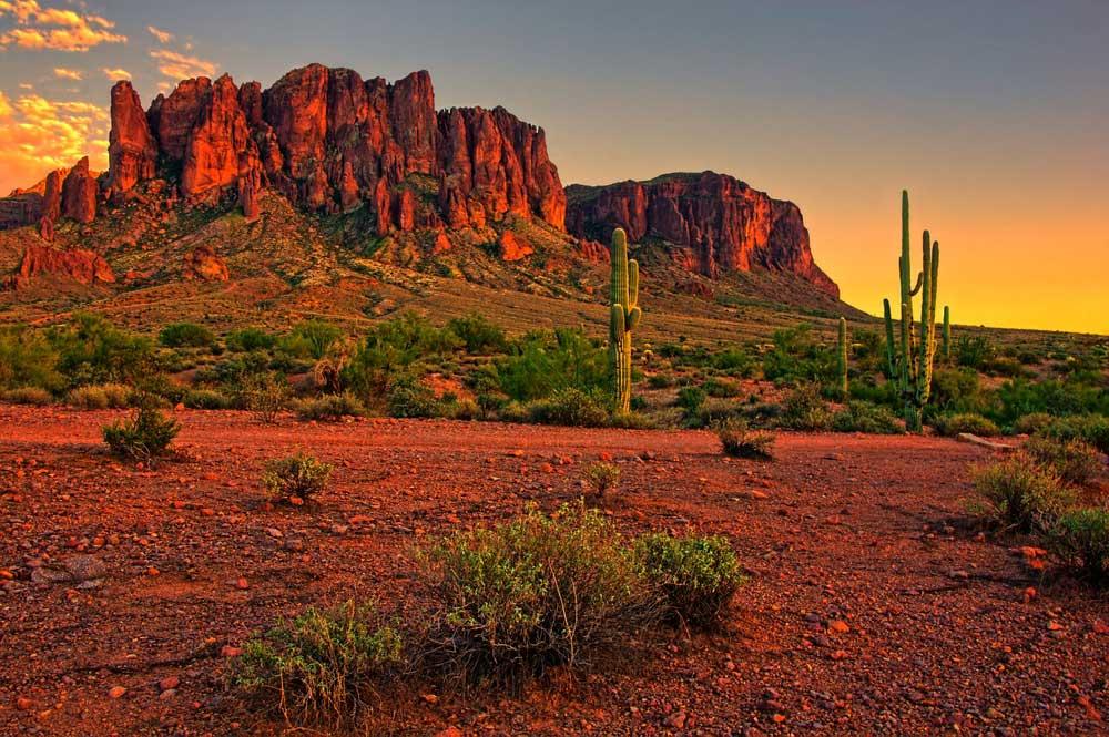 Sonora Wüste bei Sonnenuntergang