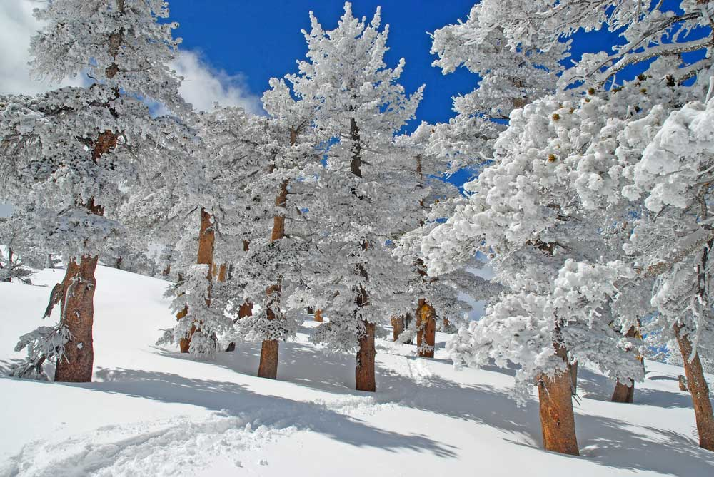 Winter in den Ariondack Mountains